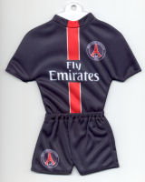 Paris Saint-Germain F.C. - Home 2005-2006 - Thanks to TOPteams