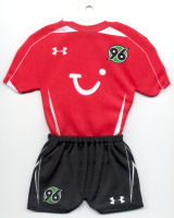 Hannover 96 - Home 2008-2009