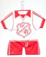 TSV 1919 Neckarbischofsheim