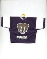 U.N.A.M. (Pumas)